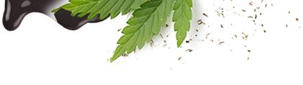 cannica-uk-leaf4